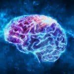 Comment le CBD fonctionne dans le cerveau ?
