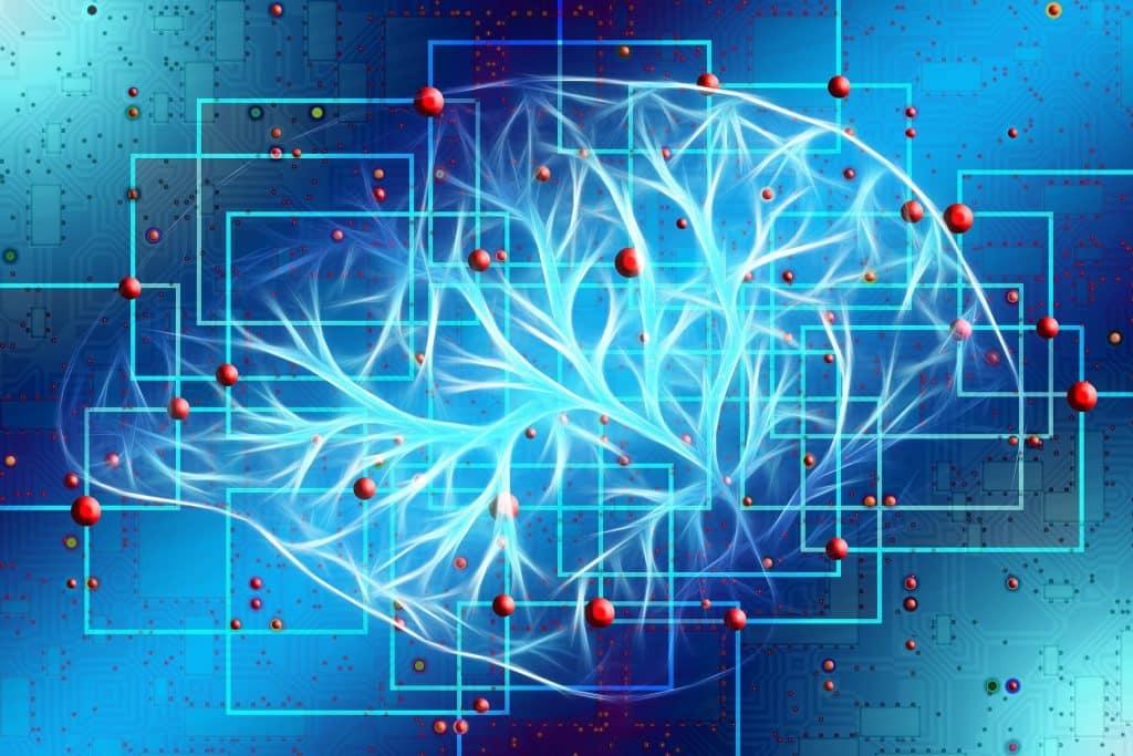 Les effets du CBD sur le cerveau